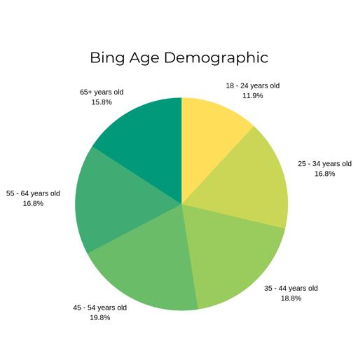 Bing Age Demographic