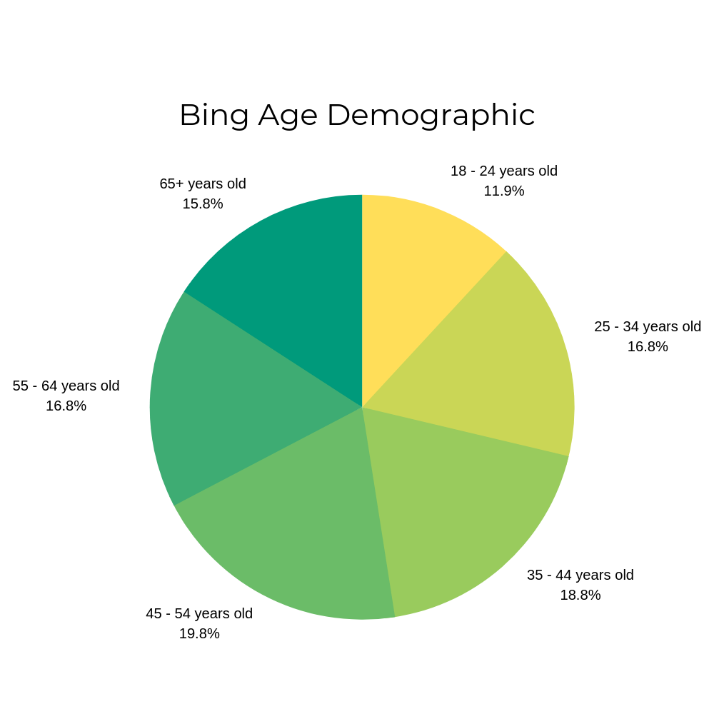 Bing Age Demographic