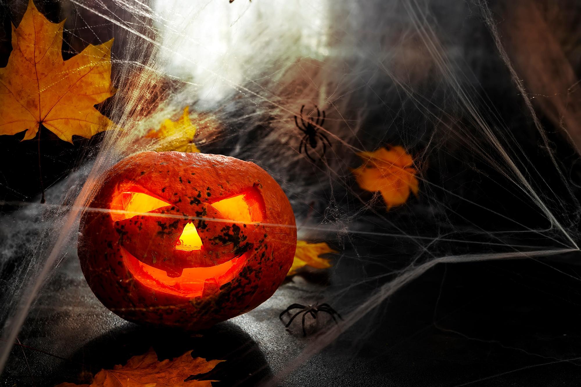 Halloween Pumpkin Head Cobwebs